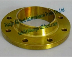 Stainless weld neck flanges forged iron pipe fittings