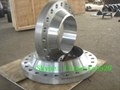 Forged carbon steel  Weld neck Flanges A105   5
