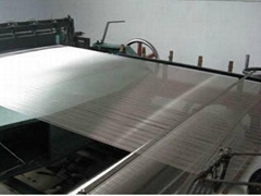 Stainless Steel Woven Wire Mesh/Cloth