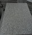 G341 gray granite paving stone on