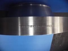 ASME B16.5 A182 F22 Weld Neck Flanges
