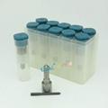 DLLA 153 P 1609 and bosch DLLA 153P 1609 manual pressure sprayer nozzle DLLA153P 2
