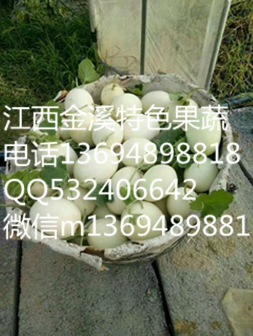 白玉甜瓜 1