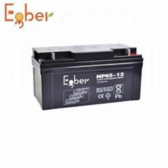 12V65AH 不间断电源蓄电池