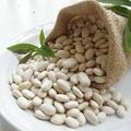 現貨 滋養補體 抗衰老 白芸豆