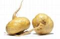Good quality herbal extract 10:1 Maca