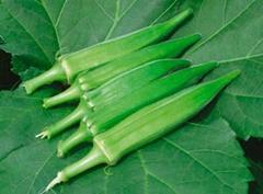 天然植物提取物 品质保证  黄秋葵提取物