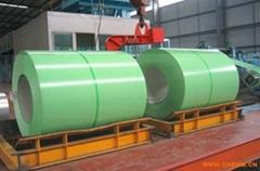Superior Quality PPGI Prepainted galvanized steel coils