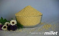 Good Quality Millet with Competitive Price
