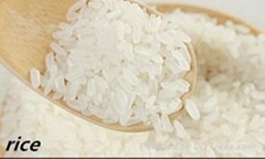 White Rice with Very Competitive Price