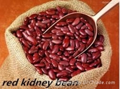 Made in China Red Kidney Bean