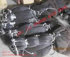 black horse tail hair