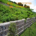 石笼网厂家供应公路防护专用加筋石笼网 4