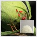 insecticides imidacloprid 95%TC&98%TC 1