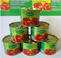 tomato paste canned 1