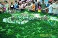 合肥建築模型公司 3