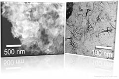 Magnetite Nanoflakes