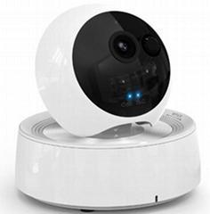720P WIFI Pan Tilt Alarm IP Camera