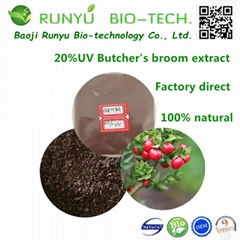 20%UV Ruscus aculeatus Butcher's Broom Root Extract Powder