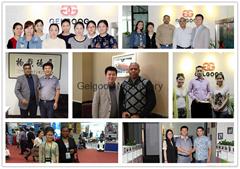 Henan Gelgoog Machinery Co., Ltd