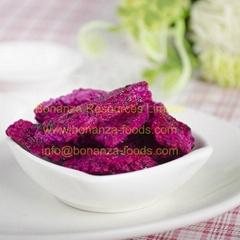 Freeze Dried Dragon Fruits
