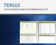以色列Tersus無代碼管理軟件開發授權及培訓