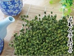 Lower Blood Pressure Panax China Ginseng Flower Tea