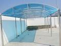 陽光板篷 卡布隆 5