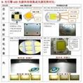 免驅動光引擎LED10W交流投光燈光源 4