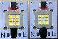 免驅動光引擎LED10W交流投光燈光源 2