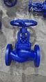 DIN 3356 globe valve Flange End PN16 1