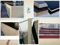 Black Film faced plywood used in concrete construction