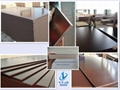 15mm Film faced plywood, building construction materials 4