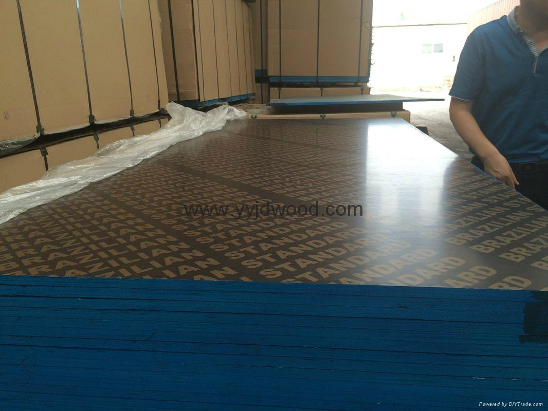 Multilayer Film Faced Plywood 2