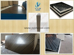 Multilayer Film Faced Plywood