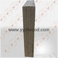 Multilayer Film Faced Plywood 3