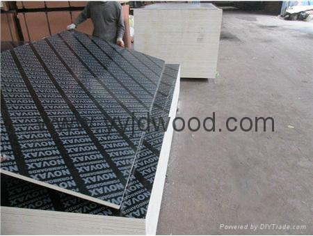 Multilayer Film Faced Plywood 4