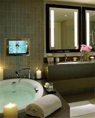 42'' waterproof bathroom tv HD digital