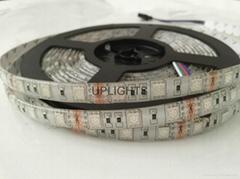 LED Strip SMD 5050 2835 3528 5630 RGBW RGB LED Strip