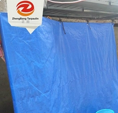 Canvas fabric PE tarpaulin manufacturer | China PE tarpaulin in Rolls