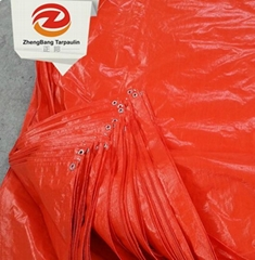 Low Price PE tarpaulin | China PE tarpaulin in Rolls