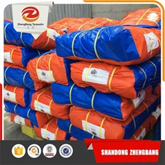Low Price Laminated PE Tarpaulin With Stripes