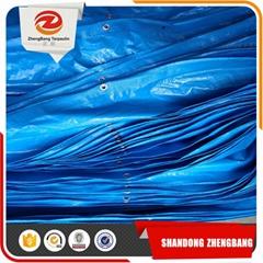 waterproof PE material plastic Tarpaulin sheet