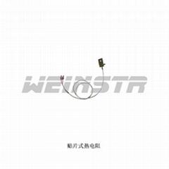 安徽威格weinstr仪表电厂高温专用WRN/WRP热电偶