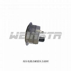 安徽威格weinstr儀表化工廠專用YXC電接點壓力表