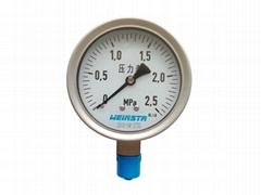 安徽威格weinstr仪表Y-100B不锈钢压力表