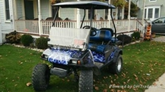 Club Car DS Custom Lifted Golf Cart