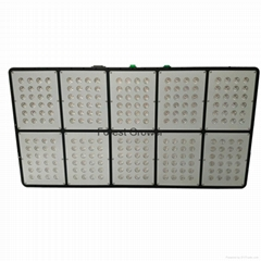 Forest Grower 720W full spectrum LED Grow light for grow tent