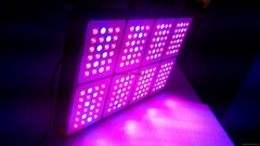 Forest Grower  576w LED Grow light full spectrum for the grow tent greenhouse
