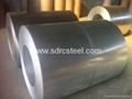 Galvanized Steel Coil 4